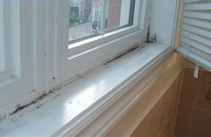 How to Remove Black Mold From Windows. Been getting small mold spots when using the humidifier. Cleaning Mold, Bathroom Cleaning Hacks, House Cleaning Tips, Diy Cleaning Products, Spring Cleaning, Cleaning Supplies, Cleaning Checklist, Cleaning Recipes, Cleaning Solutions