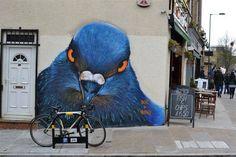 pigeon street art
