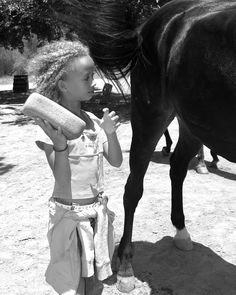 photo by Sada Crawford https://flic.kr/p/34yyeS | learning how to wash a horse