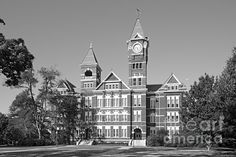 Auburn University Sa
