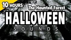 Alice Halloween, Halloween Sounds, Samhain Halloween, Holidays Halloween, Scary Halloween, Halloween Decorations, Horror Sounds, Scary Sounds, Scary Sound Effects