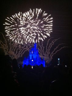 Disneyworld.....THE DREAM WILL LIVE ON...= )