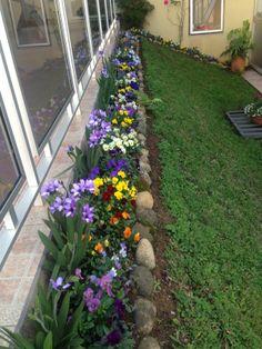 45 Flower Landscaping Ideas to Transform Your Front Yard in Spring 2020 - small front yard landscaping ideas Garden Yard Ideas, Full Sun Landscaping, Front Garden, Front Yard Landscaping, Porch Landscaping, Cottage Garden, Small Front Yard Landscaping, Front Yard Garden, Garden Beds