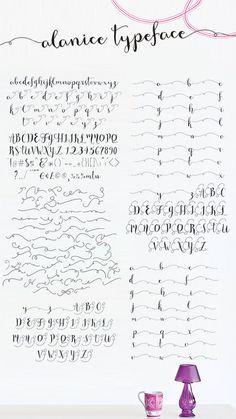 AlaNice Modern Calligraphy Font - Script °°