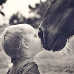 Horse Love starts early and never really goes away. Beautiful Horses, Animals Beautiful, Animals For Kids, Cute Animals, Clydesdale, Horse Photography, Horse Love, Belle Photo, Pets