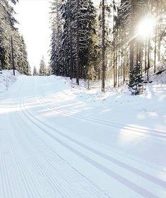 Koskematon latubaana hetkeä ennen tuhansien hiihtäjien @finlandiahiihto'a ja kärjen saapumista.  #finlandia #finlandiahiihto #skimaraton #skimarathon #hiihto #xcskiing #hillasblog #winter