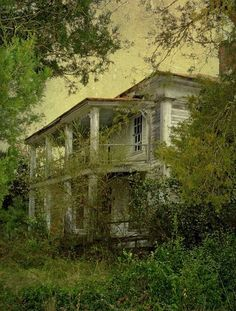 An abandoned Southern mansion in Lenoir County, North Carolina -This hauntingly beautiful and grand old antebellum estate is almost lost to nature and time.