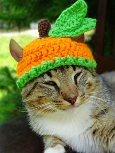 Pumpkin Cat Dog Hat - The Pumpkin Halloween Costume for Cats and Small Dogs - Pumpkin Cat Dog Costume