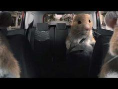 2012 kia soul hamster commercial black sheep kia hamsters video mp4 car commercials. Black Bedroom Furniture Sets. Home Design Ideas