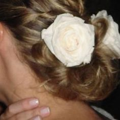flores de cabelo rosas preservadas