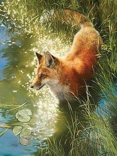 Out Foxed -  a painting by Bonnie Marris Cunning, sly and wily, the fox is adept at deception. From time to time, however, the devious dodger can be bested by the trickery of another.