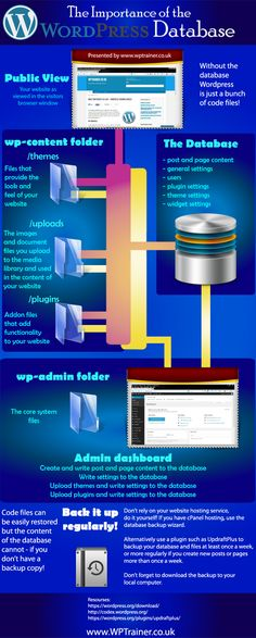 The importance of WordPress Database #infografia #infographic #socialmedia
