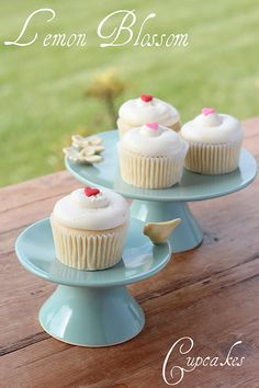 Lemon Blossom Cupcakes Recipe from the Georgetown Cupcake Cookbook #cupcakes #cupcakeideas #cupcakerecipes #food #yummy #sweet #delicious #cupcake