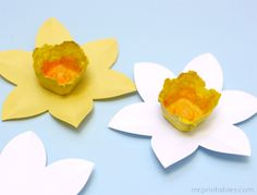 flor de papel y caja de huevo