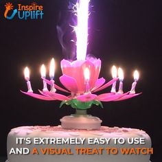 Blooming Musical Candle 😍 Level up birthday parties with this Blooming Musical Candle! This amazing candle plays the birthday song and opens up into a beautiful flower. The candle first appears as a closed flower bud. Once lit, the center flame lights th Happy Birthday Wishes Cake, Happy Birthday Cake Images, Happy Birthday Video, Happy Birthday Celebration, Birthday Songs, Happy Birthday Messages, Happy Birthday Greetings, Birthday Quotes, Birthday Parties