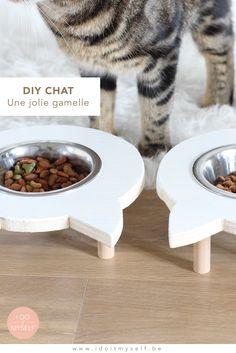 DIY CHAT : Créez une jolie gamelle en forme de chat pour votre petit pensionnaire! Le tutoriel détaillé est sur mon blog : www.idoitmyself.be  CAT DIY : Create a cute bowl stand for your favorite pet