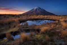 The Lesser Souls by Dylan Toh  & Marianne Lim on 500px