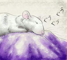 DCY Illustrations Rat Sleeping
