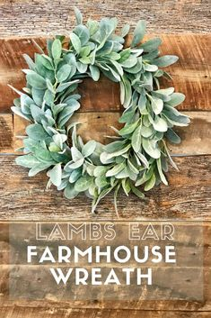 Lamb's Ear Farmhouse Wreath This modern wreath is so simple and elegant.and perfect for the holidays! Felt Flower Wreaths, Twig Wreath, Felt Flowers, Diy Flowers, Fall Wreaths, Seasonal Decor, Fall Decor, Farmhouse Style, Farmhouse Decor