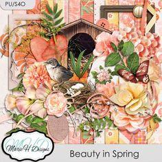 Beauty in Spring Kit