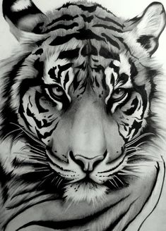 My tattoo ~ Sumatran Tiger by ~artistelllie