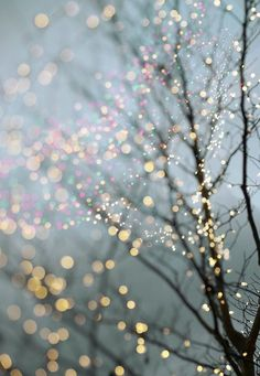 Winter photography - holiday fairy lights in trees, festive winter scene, fine . - Winter Photography – Holiday Fairy Lights in Trees, Festive Winter Scene, Fine Art Landscape Phot - Wallpaper Natal, Of Wallpaper, Winter Iphone Wallpaper, Christmas Phone Wallpaper, Christmas Lights Wallpaper, Christmas Lights Background, Holiday Wallpaper, Sparkly Background, Christmas Aesthetic Wallpaper