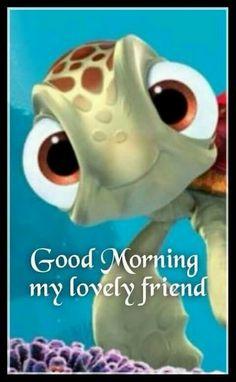 Good Morning #Turtle