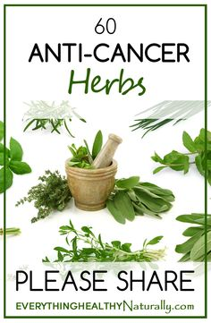 60 Anti-Cancer Herbs