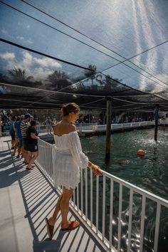 Florida Keys Road Trip | 5-Day Travel Guide - Dana Berez Key West Resorts, Key West Vacations, West Road, Downtown Miami, Boat Tours, Florida Keys, South Beach, Beach Resorts, Beach Day