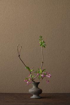2012年4月16日(月)   馬酔木は、毎年心待ちにする花のひとつ。   花=接骨木(ニワトコ)、赤花馬酔木(アカバナアセビ)   器=須恵器壺(古墳時代)