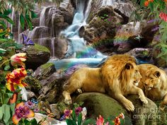 Love Lion Waterfall Digital Art