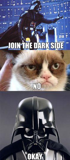 Cat Vader Gif