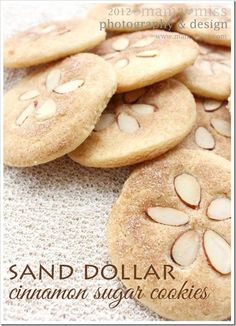 Sand Dollar Cinnamon Sugar Cookies OMG how cute is this? Sand dollar cinnamon sugar cookies - what a great idea for a beach or summer themed party! Köstliche Desserts, Dessert Recipes, Picnic Recipes, Dishes Recipes, Picnic Ideas, Picnic Foods, Sand Dollar Cookies, Cinnamon Sugar Cookies, Almond Cookies