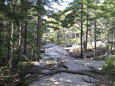 Great Hikes - Acaida