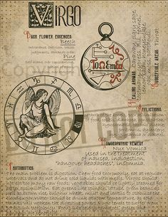 7 pages set about VIRGO Astrological Sign Correspondences. They are an ideal addition to your own Wicca Book of Shadows. Astrology Zodiac, Horoscope, Zodiac Signs, Herbalife Shake Recipes, Wiccan Spells, Magick, Witchcraft, Pagan, Herbal Magic