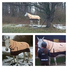 mannEQUIn - getting horse and rider through the colder months! #horse #rider #winter #equestrianfashion #mannequin #trencin #slovakia