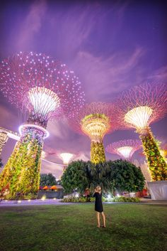 Singapore Photography Locations, Supertree Grove by The Wandering Lens photographer Lisa Michele Burns