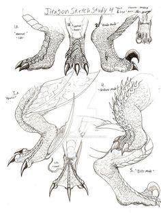Dragon's paws