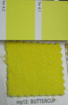 This is a good name to describe the TW yellow. Bright, but not as much as BW. From my pashmina U. Winter Colors, Warm Colors, Colours, Jewel Tone Colors, Jewel Tones, Cool Undertones, Dark Winter, Bright Spring, Cool Tones