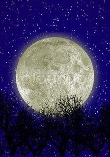 Night sky, it's STELLAR!