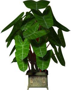 Garden Pot Plant (97).png