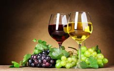 Red and White, both are traditional wine in India which will continue to grow in coming years. Whereas sparkling wine and rose wine are comparatively new categories in the country which are expected to catch the market fast. White Wine Grapes, Red Grapes, Red Wine, Wine Wallpaper, Food Wallpaper, 1080p Wallpaper, Wine Painting, Painting Abstract, Vides