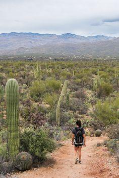 A hiker explores the Rincon Mountains in Saguaro National Park near Tucson, Arizona.