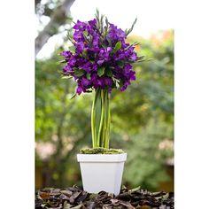 arranjos de flores com gladíolos EM CASAMENTOS - Pesquisa Google