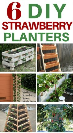growing strawberries in containers Here are some of the best strawberry planters you can build. Strawberry Planters Diy, Strawberry Beds, Strawberry Tower, Strawberry Garden, Strawberry Plants, Fruit Garden, Vegetable Garden, Diy Gardening, Container Gardening