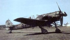 Fw 190 D-9 Langnasen-Dora in an airfield captured by the Americans, European war; Note P-47 fighters at the bottom