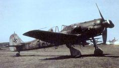 Fw 190 D-9 Langnasen-Dora