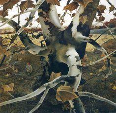 Andrew Wyeth Paintings 56.jpg