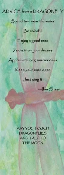 Advice from a Dragonfly