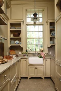 color of cabinetry in this pantry...